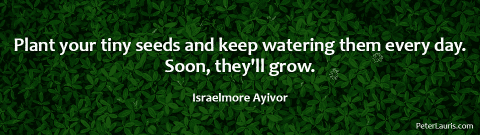 Plant your tiny seeds and keep watering them every day. Soon, they'll grow.